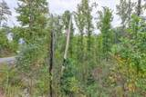 Lot 181 Cliff Branch Rd - Photo 11