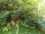 Lot 0005 Dove View Rd - Photo 1