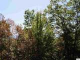 3189 Horse Gap Road - Photo 17