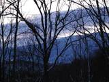 4129 Wildcat Road - Photo 10