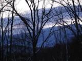 4129 Wildcat Road - Photo 12