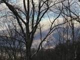 4129 Wildcat Road - Photo 22