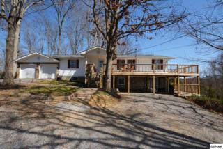 930 Timberlake Circle, Sevierville, TN 37876 (#208396) :: Colonial Real Estate