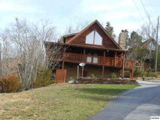 1059 Willard Way Tree Tops, Sevierville, TN 37876 (#208428) :: Colonial Real Estate