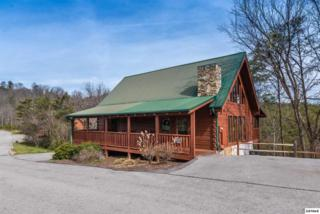 "3216 White Falcon Way ""Mountain Majes, Pigeon Forge, TN 37863 (#208440) :: Colonial Real Estate"