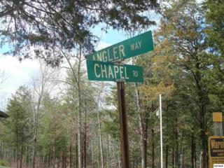 Chapel 11 Chapel Rd, Sevierville, TN 37876 (#208454) :: Colonial Real Estate