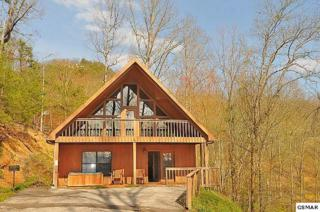 2214 Applewood Hickory Manor, Pigeon Forge, TN 37863 (#208459) :: Colonial Real Estate
