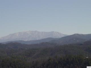 LOT 60 Misty Bluff Trail Summit, Sevierville, TN 37862 (#208477) :: Colonial Real Estate