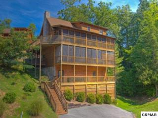 732 Black Hawk Way Cabin # 241, Pigeon Forge, TN 37863 (#208507) :: Colonial Real Estate