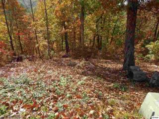 Coopers Hawk Way - Lot 24, Sevierville, TN 37862 (#208557) :: Colonial Real Estate