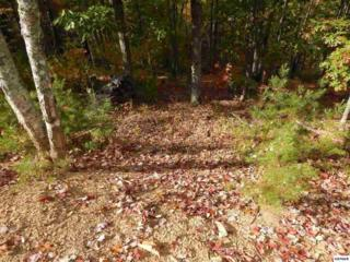 Coopers Hawk Way - Lots 39, 40 & 41, Sevierville, TN 37862 (#208558) :: Colonial Real Estate