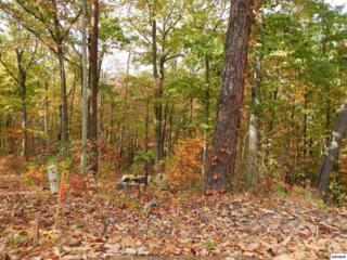 Coopers Hawk Way - Lot 62, Sevierville, TN 37862 (#208560) :: Colonial Real Estate