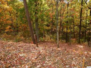 Mountain Holly Way - Lot 57, Sevierville, TN 37862 (#208561) :: Colonial Real Estate