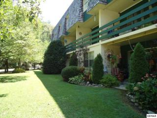 260 Roaring Fork Rd Unit 214, Gatlinburg, TN 37738 (#208576) :: Colonial Real Estate