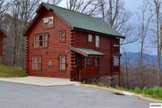 2803 White Oak Ridge Lane, Sevierville, TN 37862 (#208599) :: Colonial Real Estate