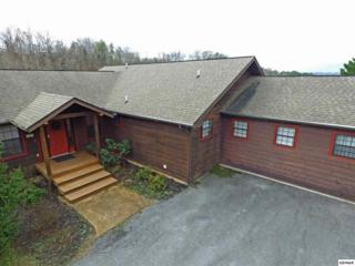 615 Rainbow Rd Unit 5, Sevierville, TN 37862 (#208600) :: Colonial Real Estate