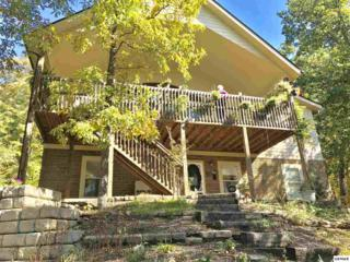 3540 Country Dreams, Sevierville, TN 37862 (#208608) :: Colonial Real Estate
