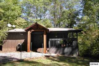 2616 Hawks View Trail, Gatlinburg, TN 37738 (#208613) :: Colonial Real Estate