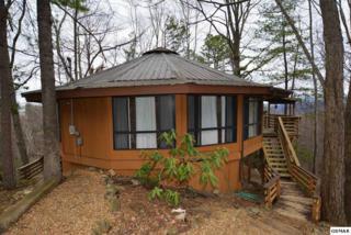 "1603 Arbon Court ""Elk Horn Lodge, Gatlinburg, TN 37738 (#208618) :: Colonial Real Estate"