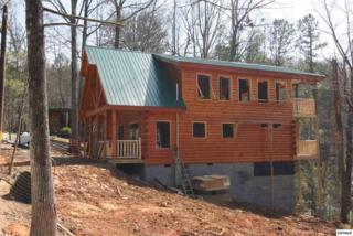 1124 Ridgefield Dr, Sevierville, TN 37876 (#208624) :: Colonial Real Estate