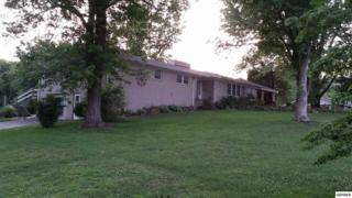 217 Hardin Lane, Sevierville, TN 37862 (#208644) :: Colonial Real Estate
