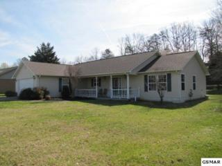 1218 Blake Lea, Sevierville, TN 37862 (#208646) :: Colonial Real Estate
