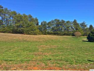 Lot 60 Bentwood Drive, Kodak, TN 37764 (#208653) :: The Terrell Team