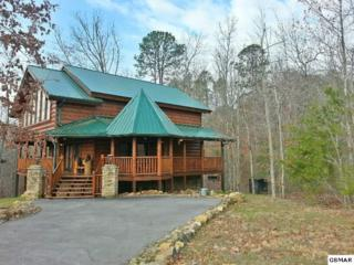 2755 Murray Ridge Rd., Sevierville, TN 37862 (#208654) :: Colonial Real Estate