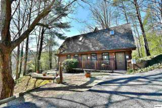 412 Glades Rd, Gatlinburg, TN 37738 (#208655) :: Colonial Real Estate