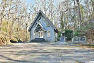 460 Glades Rd, Gatlinburg, TN 37738 (#208656) :: Colonial Real Estate