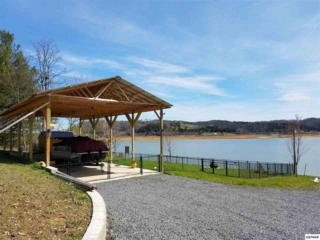 838 Harrison Ferry Rd Lot 1 Harrison , White Pine, TN 37890 (#208659) :: The Terrell Team