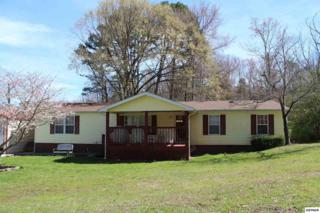 5115 Hickory Woods Road, Strawberry Plains, TN 37871 (#208660) :: Colonial Real Estate