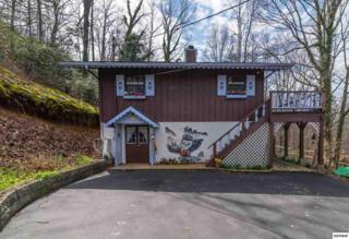 1814 Rose Ct, Sevierville, TN 37876 (#208676) :: The Terrell Team