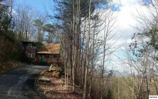 2201 Hideaway Way, Sevierville, TN 37876 (#208677) :: The Terrell Team