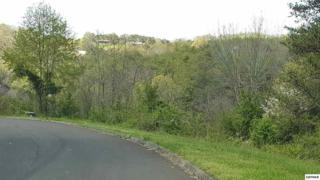 Lot 16 River Pointe, Kodak, TN 37764 (#209407) :: Colonial Real Estate