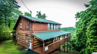 "1754 Bluff Ridge Rd ""BIG BEAR POINT, Sevierville, TN 37876 (#209413) :: Colonial Real Estate"