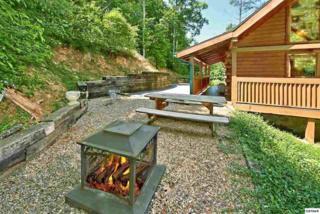 "905 Valley Drive ""Rainbow Lookou, Gatlinburg, TN 37738 (#209430) :: Colonial Real Estate"