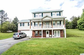 3410 Bent Rd, Kodak, TN 37764 (#209433) :: Colonial Real Estate