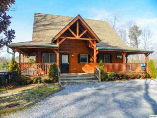 """3741 Shadyview Ridge Road """" Time Stands S, Sevierville, TN 37876 (#209449) :: Colonial Real Estate"""