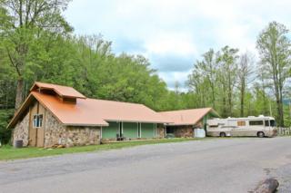 4304 Liberty Rd, Cosby, TN 37722 (#209506) :: SMOKY's Real Estate LLC