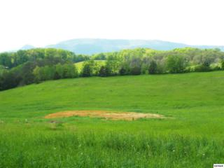 2761 Early Road, Cosby, TN 37722 (#209540) :: SMOKY's Real Estate LLC