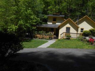 737 Waterfall View Lane, Sevierville, TN 37876 (#209580) :: Colonial Real Estate