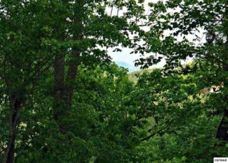 Lot 22 Sugar Maple Loop, Sevierville, TN 37862 (#209607) :: Colonial Real Estate