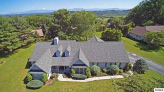 907 Eagle Nest, Kodak, TN 37764 (#209699) :: Colonial Real Estate