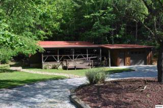 612 Stonegate Way, Townsend, TN 37882 (#209747) :: SMOKY's Real Estate LLC