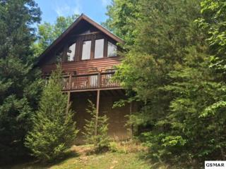 "4411 Forest Vista Way ""Wooded Bliss"", Pigeon Forge, TN 37863 (#209876) :: Colonial Real Estate"