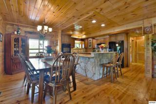 2221 Linn View Drive, Seymour, TN 37865 (#209911) :: Colonial Real Estate