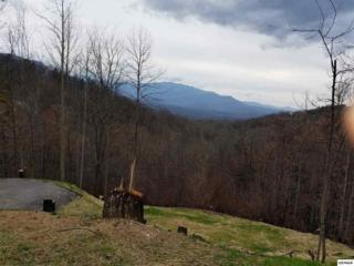 1115 Pine Top Lane Lots 15 & 16, Gatlinburg, TN 37738 (#209940) :: SMOKY's Real Estate LLC