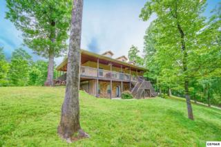 306 White Cap Lane, Pigeon Forge, TN 37863 (#209961) :: Colonial Real Estate