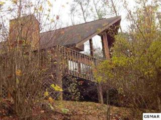 3517 Sugar Maple Loop Rd. Lil Dalaiwood, Sevierville, TN 37862 (#209968) :: SMOKY's Real Estate LLC